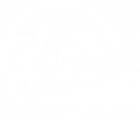 Virgin Wines Logo